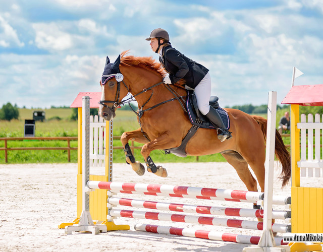 Vital Horse Jumping Cup 18.06 Wielka Lipa